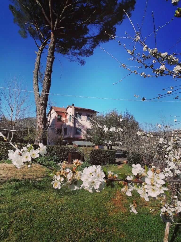Casone primavera